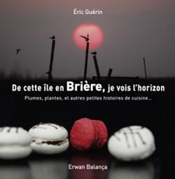 Livre_couverture_de-cette-ile-en-briere-je-vois-l-horizon_eric-guerin_erwan-balanca